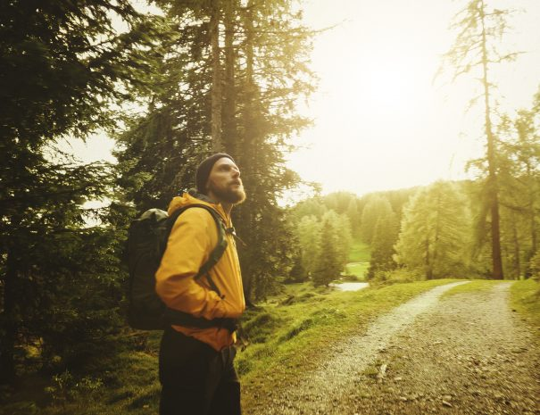 Man hiking and exploring forest area